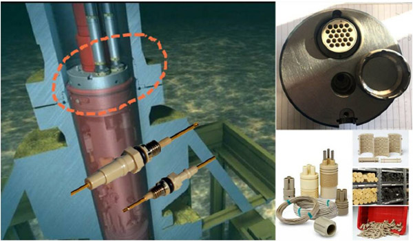 Why PEEK material is widely used in sealing terminal & connector application in oil&gas field?